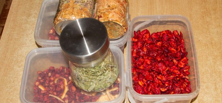 Dried and fermented food experiments