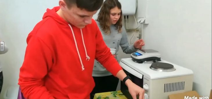 Winter food Conservation experiments in Slovakian school